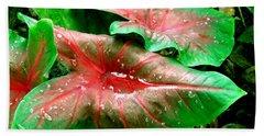 Beach Towel featuring the painting Red Green Caladium Floral Still Life Morning Rain by Mas Art Studio
