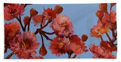 Red Gum Blossoms Australian Flowers Oil Painting Beach Sheet by Chris Hobel