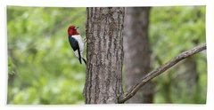 Red-headed Woodpecker 2017-1 Beach Towel by Thomas Young