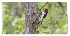 Red-headed Woodpecker 2017-2 Beach Towel by Thomas Young