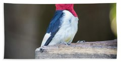 Beach Towel featuring the photograph Red-headed Woodpecker With Seed  by Ricky L Jones