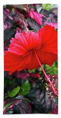 Red Hibiscus  Beach Sheet by Inspirational Photo Creations Audrey Woods