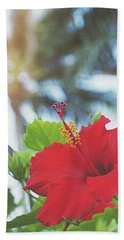 Beach Sheet featuring the photograph Red Hibiscus by Cindy Garber Iverson