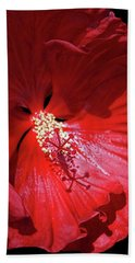 Red Hibiscus Beach Sheet by Judy Johnson