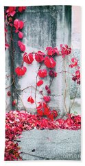 Beach Towel featuring the photograph Red Ivy Leaves by Silvia Ganora