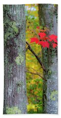 Beach Towel featuring the photograph Red Leaves by Gary Lengyel