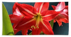 Red Lily Flower Trio Beach Sheet