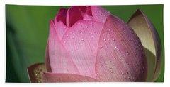 Red Lotus Blossom Beach Towel