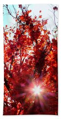 Beach Towel featuring the photograph Red Maple Burst by Wendy McKennon