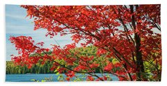 Beach Towel featuring the photograph Red Maple On Lake Shore by Elena Elisseeva