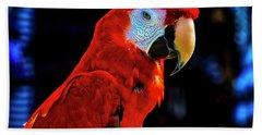 Red Parrot Portrait  Beach Towel