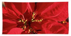 Red Poinsettia Macro Beach Sheet by Sally Weigand