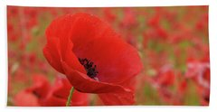 Red Poppies 3 Beach Towel