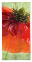 Beach Towel featuring the photograph Red Poppy by Elena Nosyreva