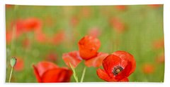 Red Poppy In A Field Of Poppies Beach Sheet by IPics Photography