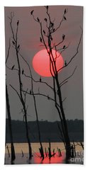 Red Rise Cormorants Beach Towel by Roger Becker
