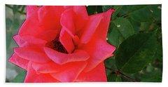 Pink Rose  Beach Towel by Don Pedro De Gracia