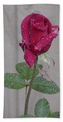 Red Rose In Rain Beach Towel