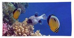 Red Sea Butterflyfish And Pufferfish Beach Sheet