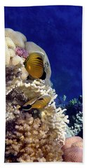 Red Sea Exotic World Beach Towel