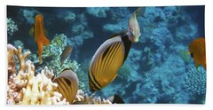 Red Sea Magical World Beach Sheet