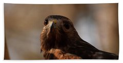 Red Shouldered Hawk Close Up Beach Sheet by Chris Flees