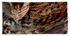 Red Spot Tabby Beach Sheet by Nancy Kane Chapman