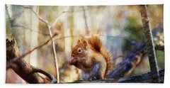 Red Squirrel With Pinecone Beach Sheet