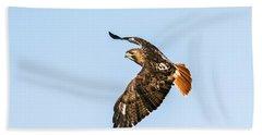 Red-tail Hawk In Flight Beach Sheet