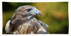 Red Tail Hawk Beach Towel by Michael Hubley
