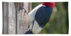 Beach Towel featuring the photograph Red-headed Woodpecker 2018  by Ricky L Jones