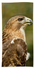 Beach Towel featuring the photograph Red-tailed Hawk Close-up by Ann Bridges