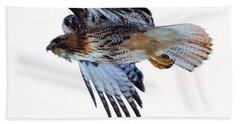 Red-tailed Hawk Winter Flight Beach Towel by Mike Dawson