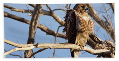 Red Tailed Beach Towel