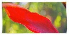 Red Ti Leaves 08 Beach Sheet