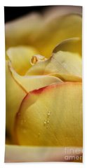 Red Tipped Yellow Rose Beach Sheet