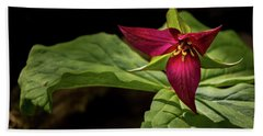 Red Trillium Beach Sheet