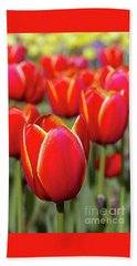 Red And Yellow Tulips I Beach Sheet