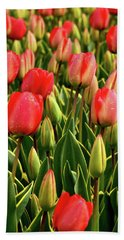 Red Tulips Beach Towel by Mihaela Pater
