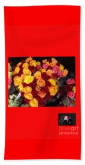 Beach Towel featuring the photograph Red Yellow Pink Roses 1 by Richard W Linford