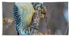 Redbellied Woodpecker Beach Sheet by Skip Tribby