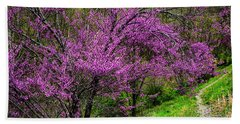 Redbud And Path Beach Towel
