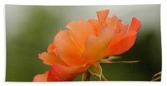 Beach Sheet featuring the photograph Redish Orange by Nick Boren