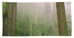Redwoods Fog Beach Towel