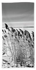Reeds On A Frozen Lake Beach Towel