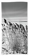 Reeds On A Frozen Lake Beach Towel