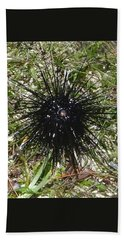 Reef Life - Sea Urchin 2 Beach Towel