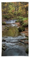 Beach Towel featuring the photograph Reflecting Autumn by Dale Kincaid