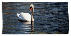 Reflecting Swan Beach Towel