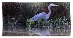 Reflections At Nassau Grove Beach Towel by Allan Levin
